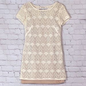 EUC Ann Taylor Loft Cream Lace Dress Liner Size 6